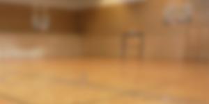 Badminton video image