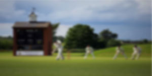 Cricketvideo image