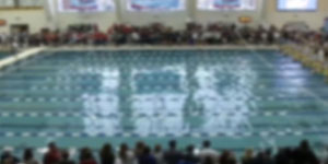 Swimming and Divingvideo image