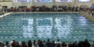 Swimmingvideo image
